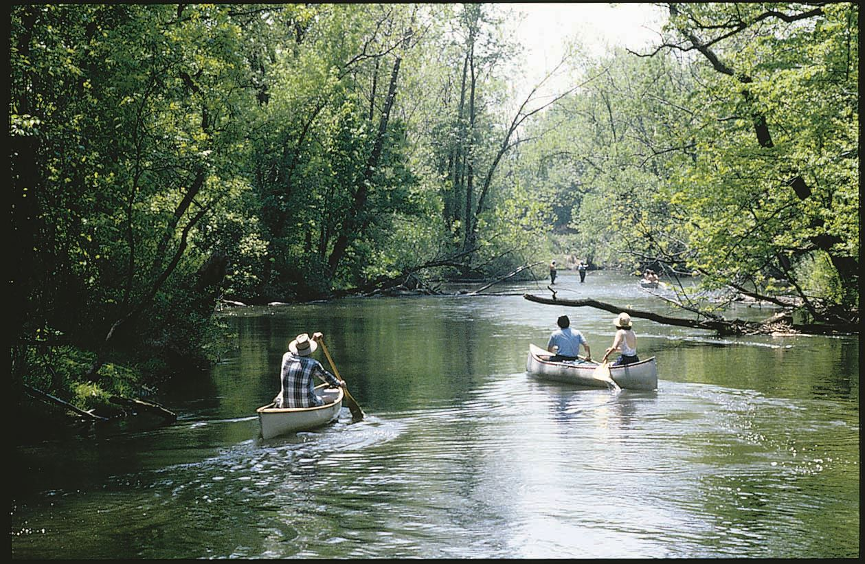 Wildcat Creek
